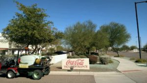 glendale weed control cocacola-161021