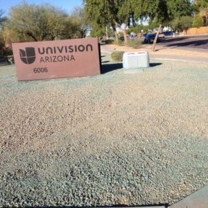 phoenix commercial weed control